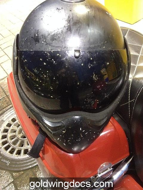 Helmet full of dead mosquitoes after nightride