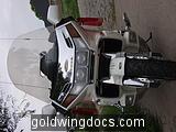 The New 1995 GL1500SE