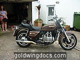 1981 GL1100 Before any tlc