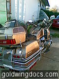 goldwing (26)