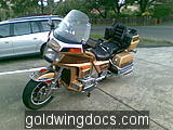 goldwing (27)