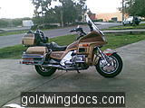 goldwing (29)