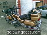 goldwing (31)