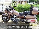 Goldwing-1