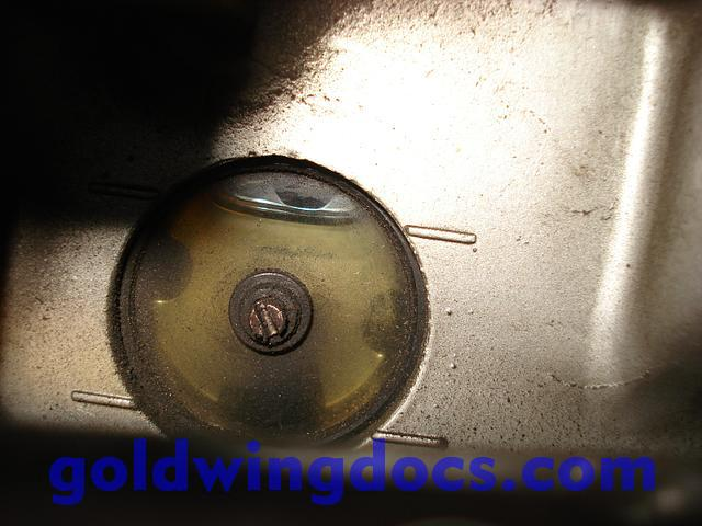 How Do You Check Your Oil Level Gl1500 Information