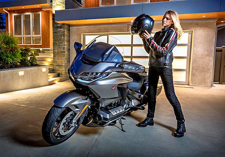 Taming the Wild 2018 Goldwing
