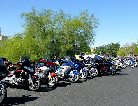 Goldwings Lined Up