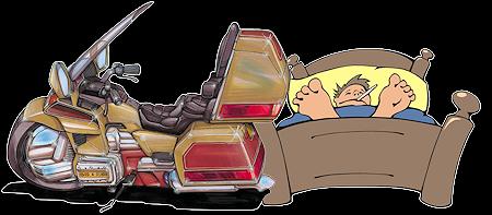 Sick Goldwing Rider
